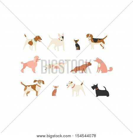 Dog puppy set illustration isolated in vector