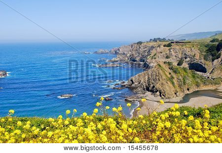 Ocean and Rugged Coastline