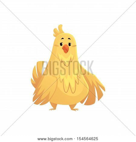 Cute and funny fat, chubby chicken, cartoon vector illustration isolated on white background. Overweight chubby chicken, fatty pet
