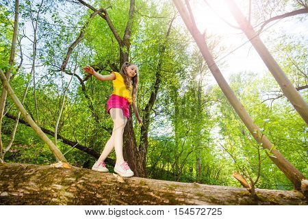 Bottom view portrait of little girl walking and balancing on trunk of fallen tree in the forest