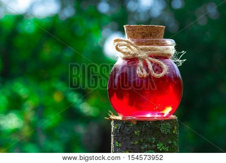 Magic Elixir in the green forest. Love potion. Copy space