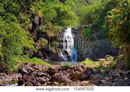 Beautiful tropical waterfall in Waimea Valley park on Oahu island poster