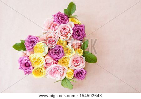 Fresh roses in different colors as a background