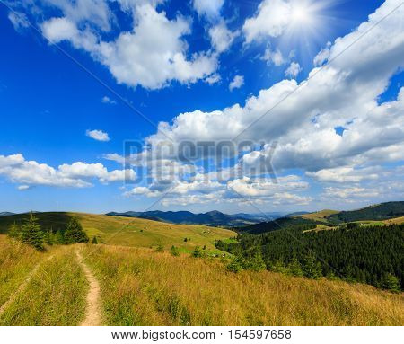 Summer Mountain Sunshiny View (carpathian, Ukraine).