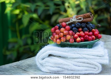 Knitted wool socks and autumn healthy berry. Kalina(viburnum) and chokeberry(aronia). Cinnamon sticks. Red and blue berries. Autumn concept. Green natural background.