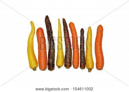 Various fresh carrot varieties on white background