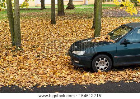 Car parked in the park in the autumn