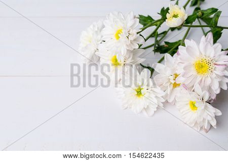 White chrysanthemum flowers with copy space on wooden background