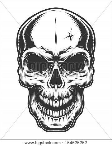 Monochrome illustration of skull. On white background