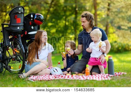 Happy family of four picnicking in the park on beautiful summer day