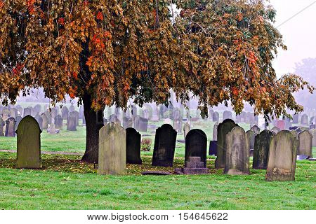 Blank old gravestones in an ancient cemetery