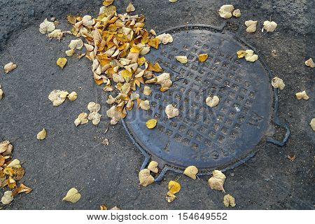 autumn, yellow, old, cover, manhole, sidewalk, drain,  object