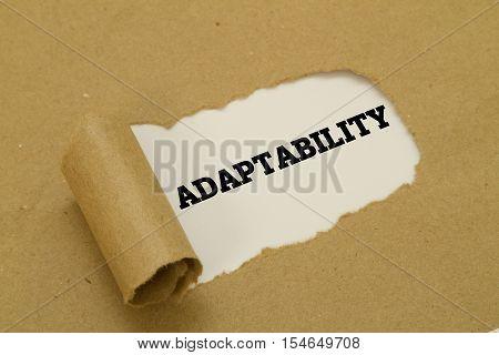 Adaptability word written under torn paper . poster
