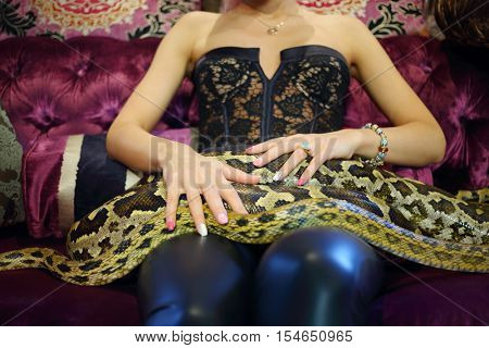Young woman in leather pants sits on velvet couch with big snake, noface
