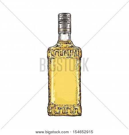 Bottle full of gold tequila, sketch vector illustration isolated on white background. Hand drawn engraved bottle of tequila, gin, brandy, rum, whiskey alcohol beverage