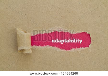 Adaptability word written under torn paper .
