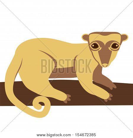 Kinkajou honey bear. Vector stock illustration of a small mammal animal on a tree branch.