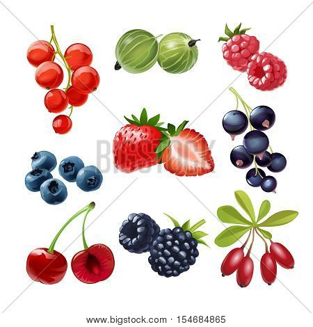 Set of vector icons of juicy ripe berries red and black currants, gooseberries, raspberries, strawberries, blueberries, cherries, blackberries, goji