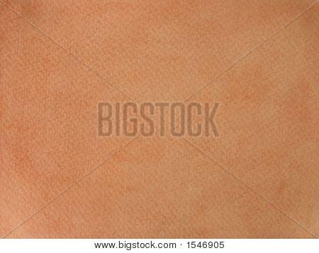 Sepia Color Background
