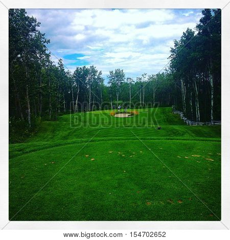 Golf course.  Green fairway and tall trees with clouds an blue sky background.