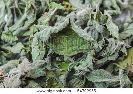 Dried White Horehound Herb,  Background