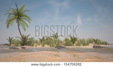 3d illustration of the tropic island scene