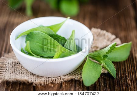 Some Fresh Stevia Leaves (selective Focus)