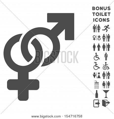 Heterosexual Symbol icon and bonus man and lady lavatory symbols. Vector illustration style is flat iconic symbols, gray color, white background.