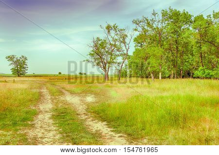vintage landscape with purple sky. dirt road in the field. hungarian countryside. unpaved road.