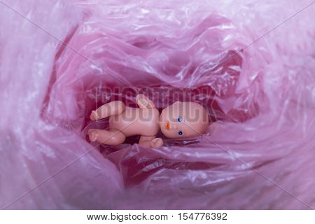 The embryo in the uterus of the mother. Inside view