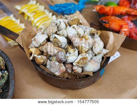 Fresh grilled veined rapa whelk at grill pan. Seafood delicacy barbecue outdoors. Picnic healthy food, rapana cooked at large metallic pan with lime. Mediterranean cuisine
