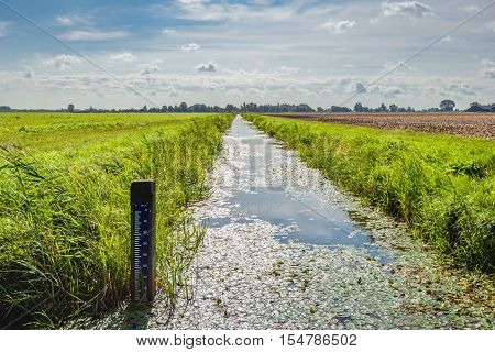 Backlit image of a polder landscape in the Netherlands with a water level staff gauge in the drainage ditch.