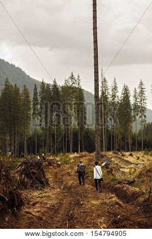 peaple  tourist witnessing a desolated landscape of forests being cut down