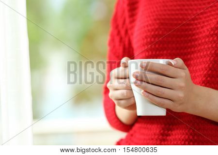 Close up of a woman wearing red sweater with hands holding a coffee cup beside a window with a green background outside