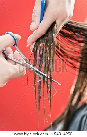 Haircutter cutting hair toned image, vertical image