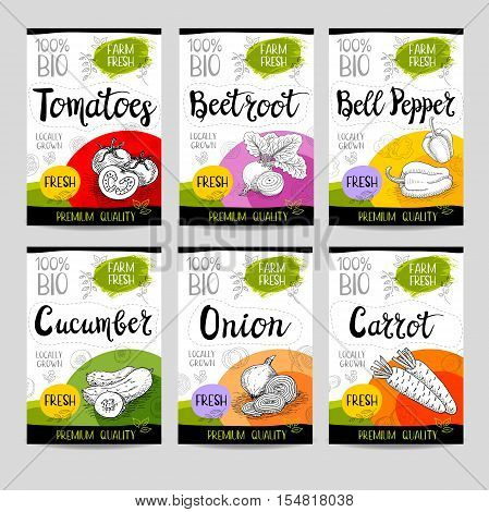 Set of colorful stickers in sketch style, food and spices, white background. Carrot, onions, tomato, bell pepper, beet. Bio vegetables, farm, fresh. locally grown. Hand drawn vector illustration.