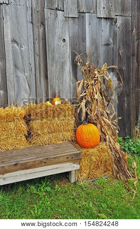 autumn orange pumpkins on hay bale with bench