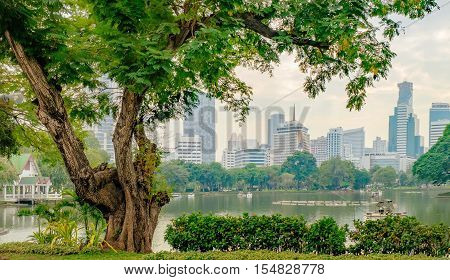 View of Bangkok skyline from Lumphini Park Thailand. Business district cityscape from a park with cloudy sky in the evening