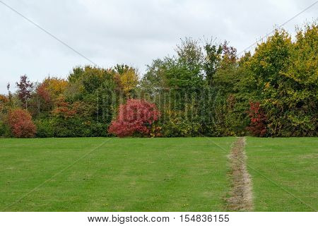 Autumn trees and shrubs in a park in Kent
