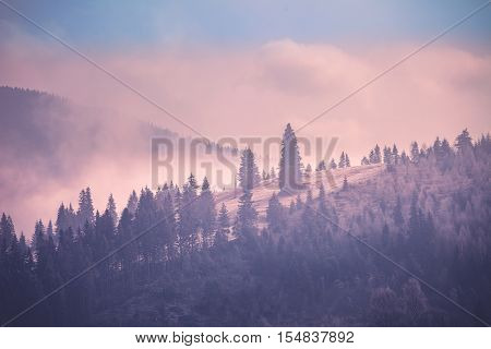 Foggy autumn landscape at mountain valley. Dramatic and picturesque morning scene. Vintage toning effect. Carpathians, Ukraine, Europe. Exploring beauty world
