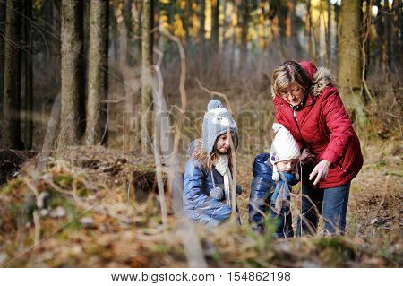Little Girls And Their Grandmother Taking A Walk In A Forest