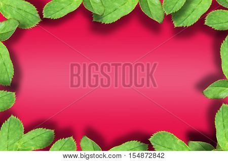 Green leaves nature frame and border on red colored background. can be used as greeting card,invitation card for wedding.