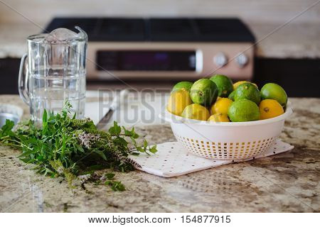 Group of citrus fruits yellow green lemons limes peppermint in dish on table ready for juice preparation glass jar on background summer refreshing drink