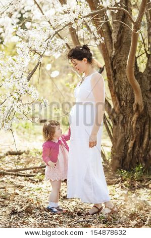 Portraits of caucasian pregnant mother in long white open dress with daughter in pink clothes on a spring summer day in the park outside among blooming cherry trees