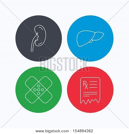 Liver, medical plaster and prescription icons. Kidney linear sign. Linear icons on colored buttons. Flat web symbols. Vector