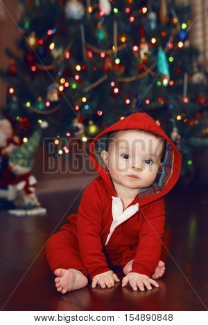 Cute adorable Caucasian baby infant with dark black eyes in red costume hoodie sitting by New Year Tree looking directly in camera. Happy holidays. Winter holidays. Baby first Christmas.