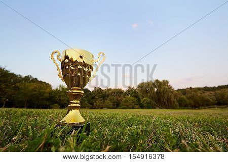 Golden cup champion standing on the green field outdoors on nature in the park. Concept of victory success a winner a champion the best.