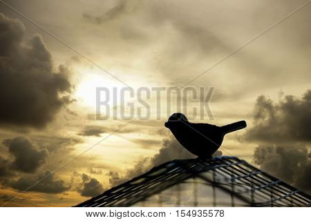 Silhouette bird escaping from the cage. Freedom concept. poster