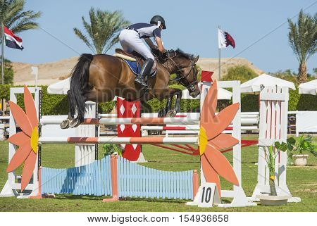 Horse And Rider Jumping In Equestrian Competition