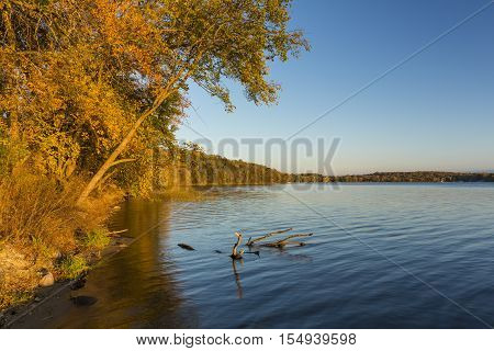 A lake with autumn color trees in early evening.